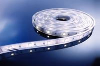 Resim LED Stripe CW 5m 12V IP33 150 LEDs